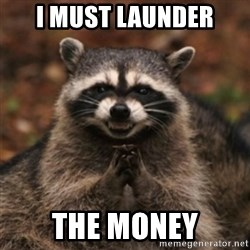 evil raccoon - I must launder the money