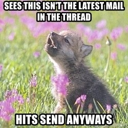 Baby Insanity Wolf - SEes this isn't the latest mail in the thread hits send anyways