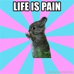 yAy FoR LifE BunNy - Life is pain