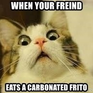 WhYcAts - When your freind eats a carbonated frito