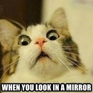 WhYcAts - When you look in a mirror