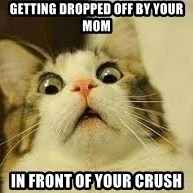 WhYcAts - getting dropped off by your mom IN front of your crush
