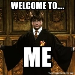 Harry Potter Come At Me Bro - welcome to.... me
