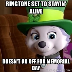Good Luck Everest  - RingTone set to staYin' Alive Doesn't go off for memOrial daY