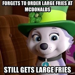 Good Luck Everest  - Forgets to order laRge fries at mcdonalds Still Gets lArge fries