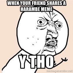 y u no meme - When your friend shares a Harambe meme Y tho