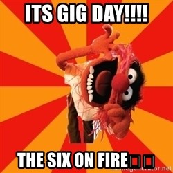 Animal Muppet - Its gig day!!!! The six on fire🔥🔥