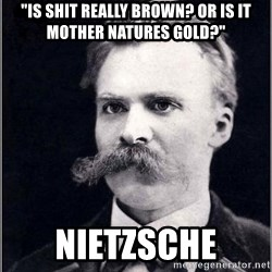 "Nietzsche - ""Is shit really brown? Or is it mother natures gold?"" Nietzsche"