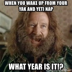What Year - When you wake up from yoUR yak and yeti nap What year is it!?
