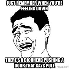 Dumb Bitch Meme - Just remember when you're feeling down There's a dickhead pushing a door That says pull