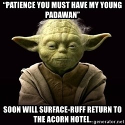 """ProYodaAdvice - """"PATIENCE YOU MUST HAVE my young padawan"""" Soon will surface-ruff return to the acorn hotel."""