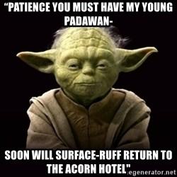 """ProYodaAdvice - """"PATIENCE YOU MUST HAVE my young padawan- soon will surface-ruff return to the acorn hotel"""""""