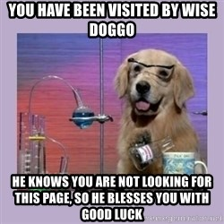 Dog Scientist - YOU HAVE BEEN VISITED BY WISE DOGGO HE KNOWS YOU ARE NOT LOOKING FOR THIS PAGE, SO HE BLESSES YOU WITH GOOD LUCK