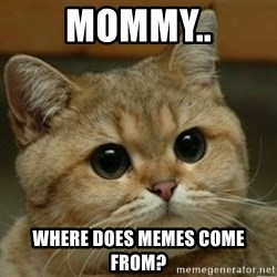 Do you think this is a motherfucking game? - Mommy.. Where does memes come from?