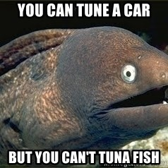 Bad Joke Eel v2.0 - you can tune a car but you can't tuna fish