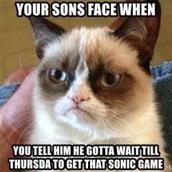 Grumpy Cat  - Your sons face when You tell him he gotta wait till thursda to get that sonic game