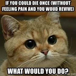 Do you think this is a motherfucking game? - If you could die once (without feeling pain and you woud revive) what would you do?