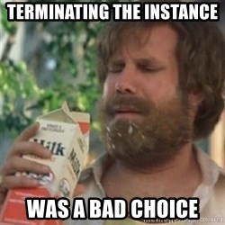 Milk was a bad choice - terminating the instance was a bad choice
