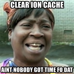 Ain't nobody got time fo dat so - clear ion cache aint nobody got time fo dat