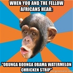 """Stupid Monkey - when you and the fellow africans hear: """"obunga boonga obama WATERMELON chricken strip"""""""