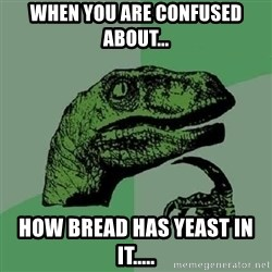 Philosoraptor - WHEN YOU ARE CONFUSED ABOUT... HOW BREAD HAS YEAST IN IT.....