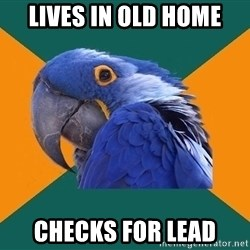 Paranoid Parrot - lives in old home checks for lead