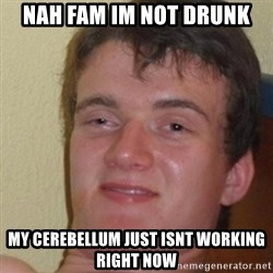 really high guy - Nah fam im not drunk my cerebellum just isnt working right now