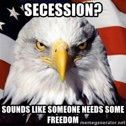 Freedom Eagle  - Secession? Sounds like someone needs some Freedom