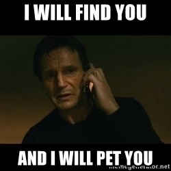 liam neeson taken - I will find you and i will pet you