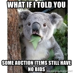 surprised koala - what if i told you some auction items still have no bids