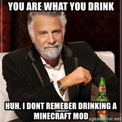The Most Interesting Man In The World - You are what you drink Huh. I dont remeber drinking a minecraft mod