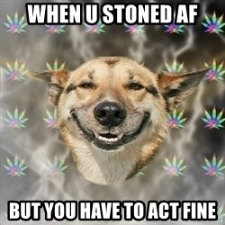 Stoner Dog - When u stoned af but you have to act fine