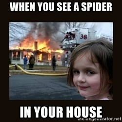 burning house girl - When you see a spider In your house