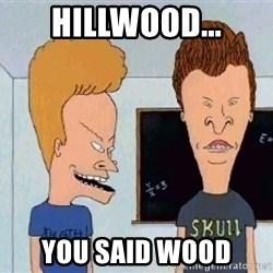 Beavis and butthead - HIllwood... you said wood