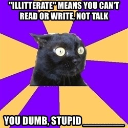 "Anxiety Cat - ""Illitterate"" means you can't read or write, not talk You dumb, stupid _______"