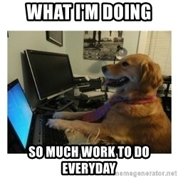 No Computer Idea Dog - What I'm Doing So much work to do everyday