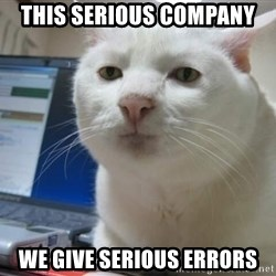 Serious Cat - This serious company We give serious errors