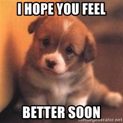 cute puppy - I Hope you feel Better soon