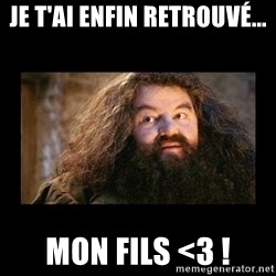 You're a Wizard Harry - Je t'ai enfin retrouvé... mon fils <3 !