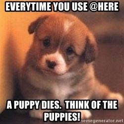 cute puppy - Everytime you use @here A puppy dies.  Think of the puppies!