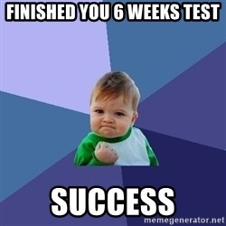 Success Kid - Finished you 6 weeks test success