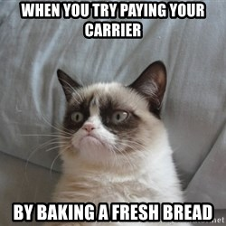 Grumpy cat good - when you try paying your carrier BY BAking a fresh bread