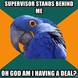 Paranoid Parrot - Supervisor stands bEhind me Oh god am i having a deal?