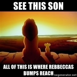 Simba - see this son all of this is where rebbeccas bumps reach