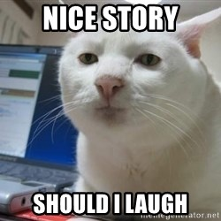 Serious Cat - nice story should i laugh