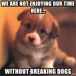 cute puppy - We are not enjoying our time here... Without breaking dogs