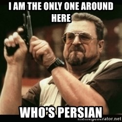 am i the only one around here - I am the only one around here WHO'S persian