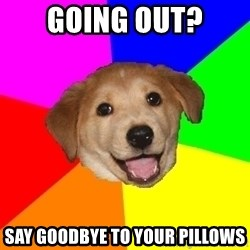 Advice Dog - Going out? Say goodbye to your pillows
