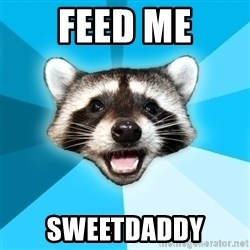 Lame Pun Coon - Feed me Sweetdaddy