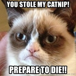 Angry Cat Meme - you stole my catnip! prepare to diE!!